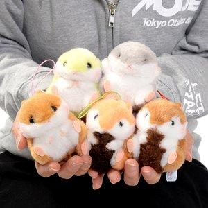 Coroham Coron to Risu-chan Hamster Plush Collection (Mini Strap)