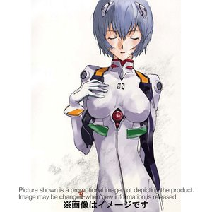 Art Prints / Calendars / Rebuild of Evangelion 2017 Calendar