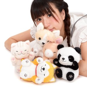 Dokodemo Nekkorogari Tai Animal Plush Collection (Standard)