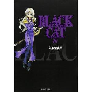Books / Manga / Black Cat Vol. 10