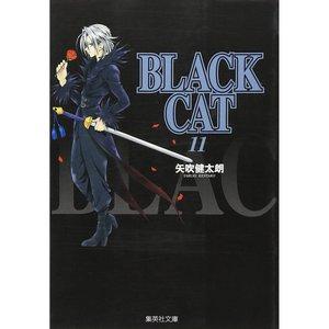 Books / Manga / Black Cat Vol. 11