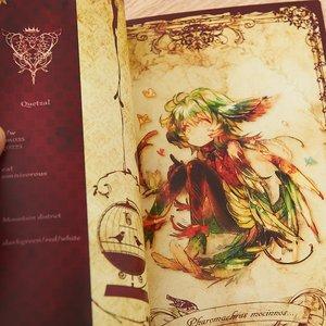 Books / Doujinshi / Birdylilyy
