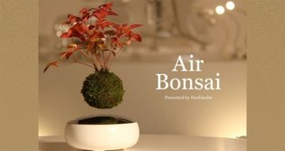 "Japanese Company Develops Unique ""Air Bonsai"" That Floats and Rotates in Mid-Air【Video】"
