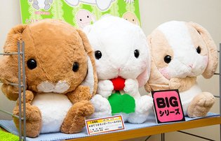 PRODUCT / There's No Denying It: Pote Usa Loppy Are Too Cute!