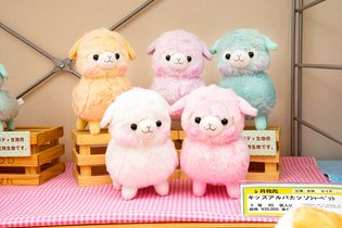 PRODUCT / Don't Miss This New Alpacasso Series!!