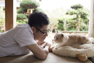 MOVIE / Neko Atsume to Get Live-Action Movie Adaptation!