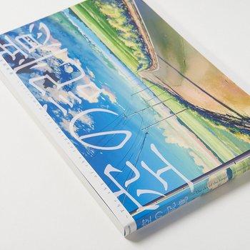 Makoto Shinkai Art Collection The Sky Of Longing For Memories 4