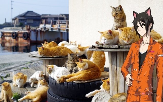 5 Heavenly Destinations in Japan for the Animal Lover [Ikemen Edition]