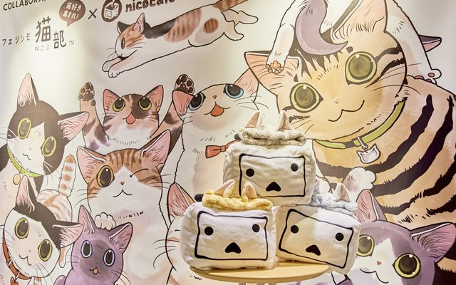 Felissimo Cat Club × nicocafe Collab Cafe: the Purrfect Place to Relax! [Photo Report]