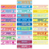 Love Live! Series 9th Anniversary Love Live! Fest Embroidered Armband Collection