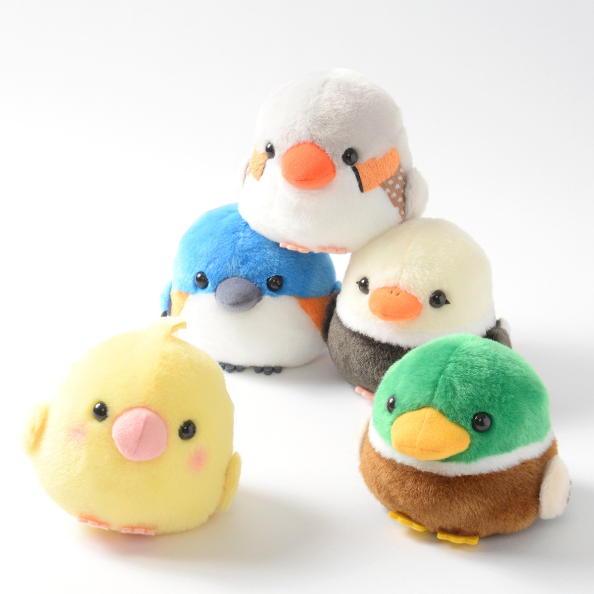 Kotori Tai Waku Waku Bird Plush Collection Standard
