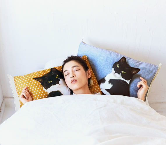 Lacking a Cat to Curl Up With? Fix That with Cute Kitty Pillow Covers!