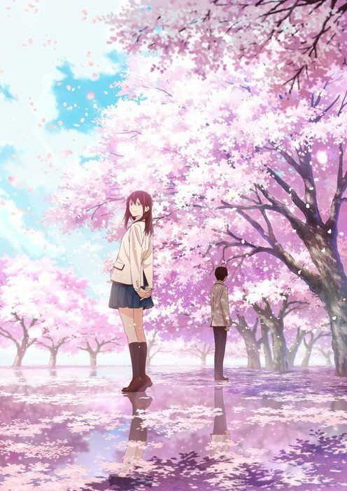 Popular Novel Let Me Eat Your Pancreas Gets Anime Movie!