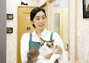 Neko Atsume no Ie Trailer Features Kimura Tae, Taguchi Tomorowo, Okubo Kayoko, and Tons of Cats!